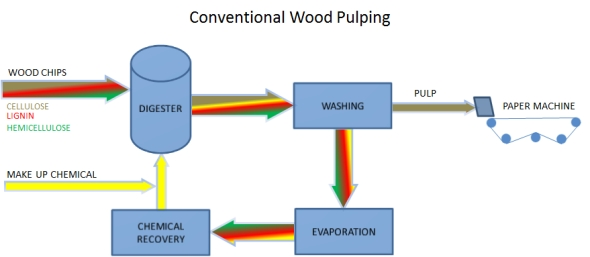 Conventional wood pulping